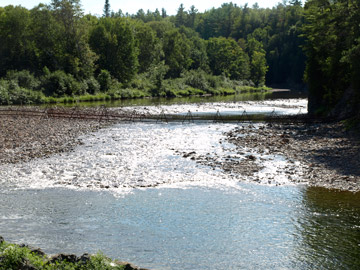 this is a barrier along Jacquet river as part of the salmon restorationin NB
