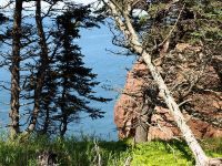 Three-Sisters-Cove-and-Kayakers