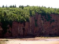 large-cliffs-of-Spicers-Cove