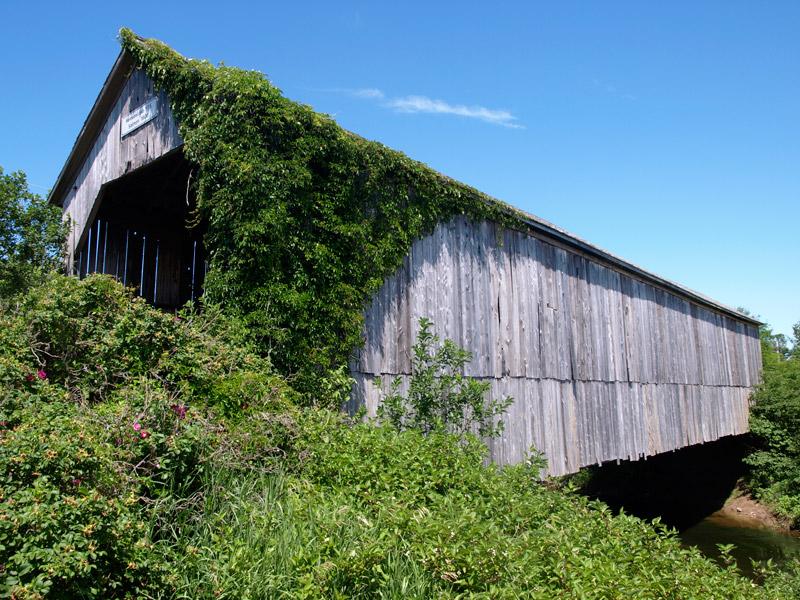 Salmon-covered-bridge