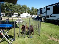 Chessey-&-Sadie-Bridgetown-Family-Campground-